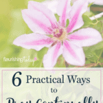 6 Practical Ways to Pray Continually Each Day