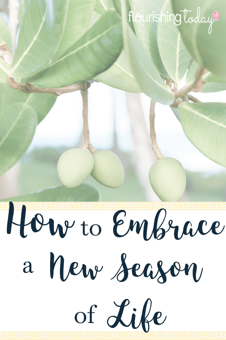 Are you going through a new season in life? Life changes can be difficult if we don't know how to navigate them. Here are some tips to embrace the changes.