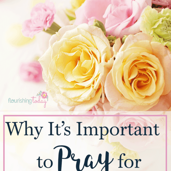 Do you pray for your marriage? Often times I will pray for my spouse, but forget to pray for my marriage. Here's a prayer for marriage to get you started.